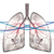 Overall-survival-in-NSCLC-Insights-and-evidence-square