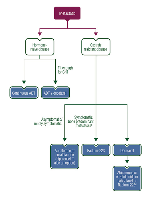 Genitourinary Cancers Treatment Algorithms Metastatic Disease