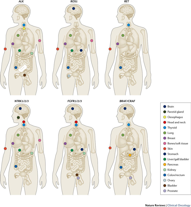 Fusions in Solid Tumours
