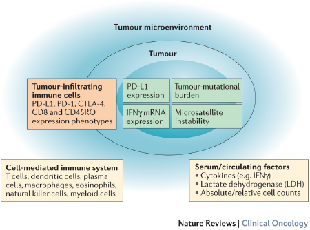 Key elements in biomarker development for immune-checkpoint inhibitor therapy